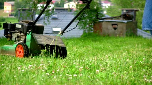 mowing grass - bahçe ekipmanları stok videoları ve detay görüntü çekimi