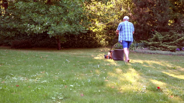 Mowing or cutting long grass with a orange color lawn mower in summer evening sunset light. video