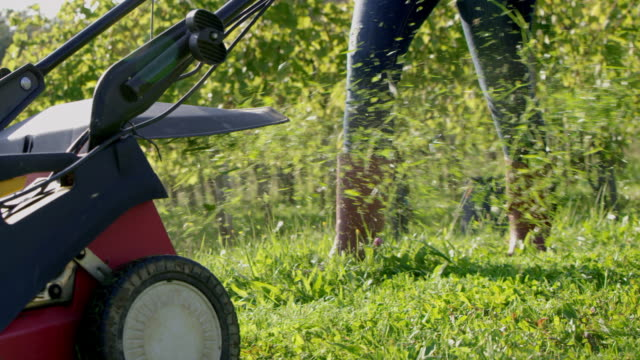 SLO MO Mowing the grass in a vineyard video