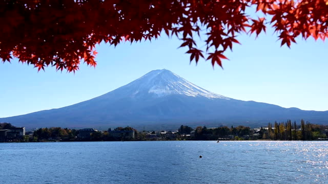 Mt. Fuji in autumn with red maple leaves at Kawaguchigo lake Japan video