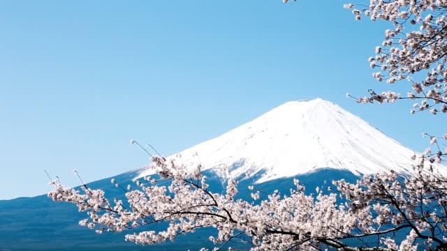 Monte Fuji - video