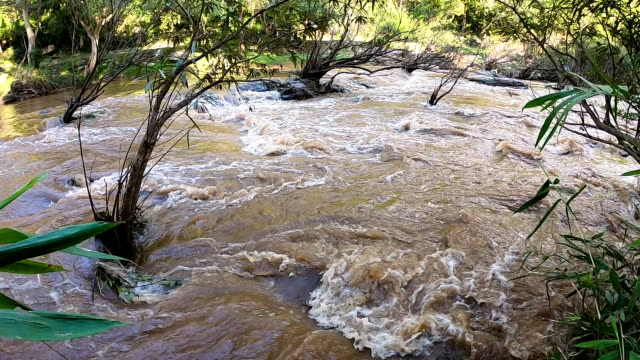 slo mo muddy river in rainy season. - monsone video stock e b–roll
