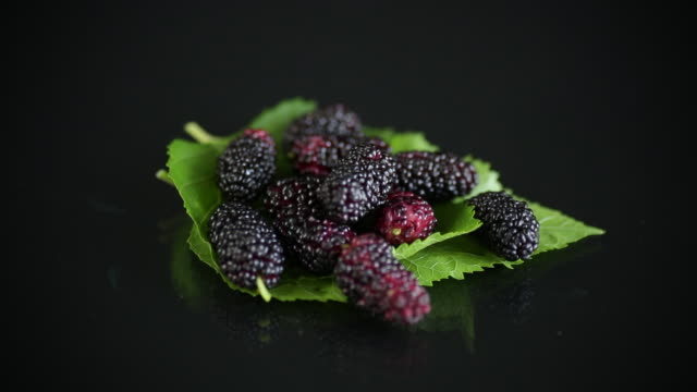 Mulberry berry with leaf on black background video