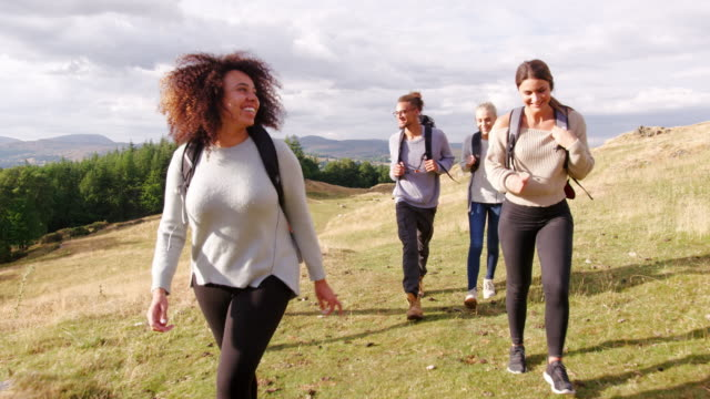 a multi ethnic group of five happy young adult friends walking across a field during a mountain hike, close up - trekking video stock e b–roll