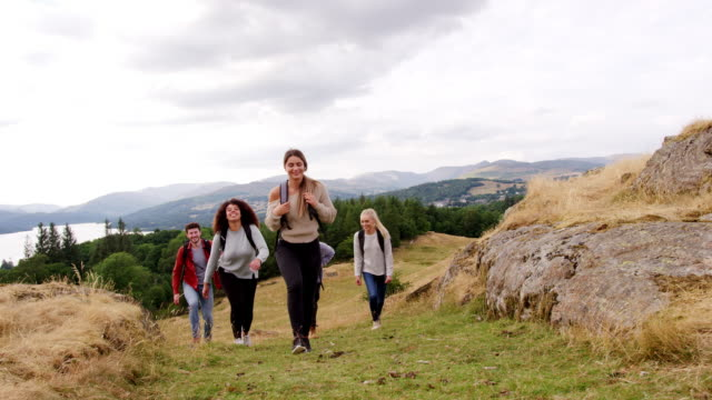 a multi ethnic group of five young adult friends smile while hiking across a field to the summit during a mountain hike, close up - trekking video stock e b–roll