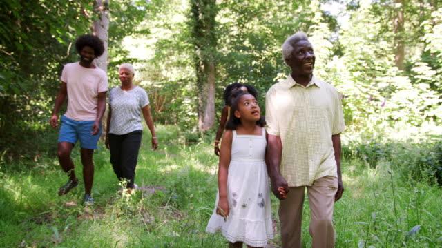 multi generation black family walking together in a forest - nonna e nipote camminare video stock e b–roll