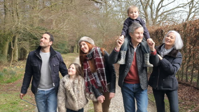 vídeos y material grabado en eventos de stock de multi generación familiar en campo con perro de paseo - vacaciones familiares