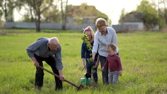 Multi generation family planting tree outdoor. video