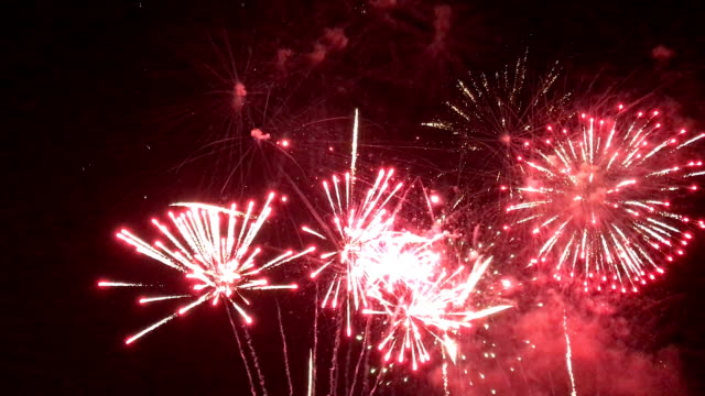 Multicolored Fireworks Multicolored Fireworks canada day videos stock videos & royalty-free footage