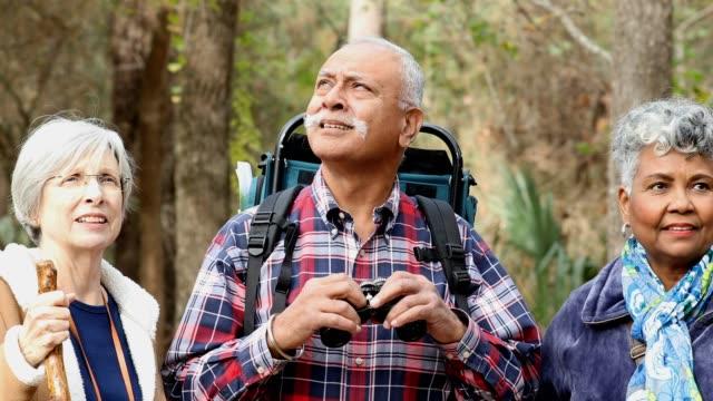 Multi-ethnisch, Waldfläche aktive Senioren Erwachsene Freunde Wandern im Wald. – Video