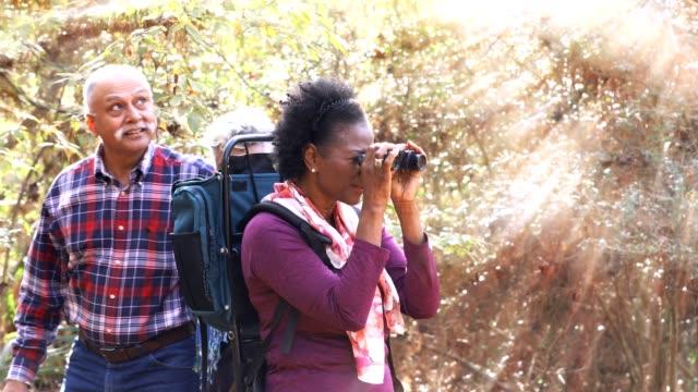 多民族でハイキング アクティブ シニア大人のお友達の森森林面積。 - バードウォッチング点の映像素材/bロール