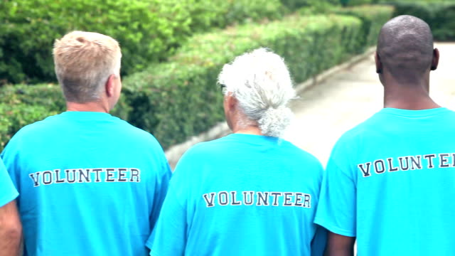 Multi-ethnic group of men, volunteers video