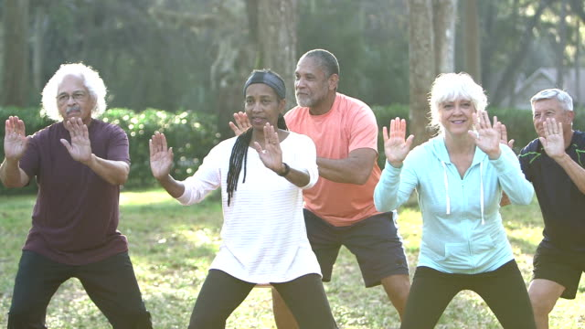 Multi-ethnic group of seniors doing tai chi in park video