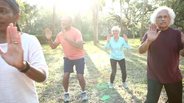 Multi-ethnic group of seniors doing tai chi in park video