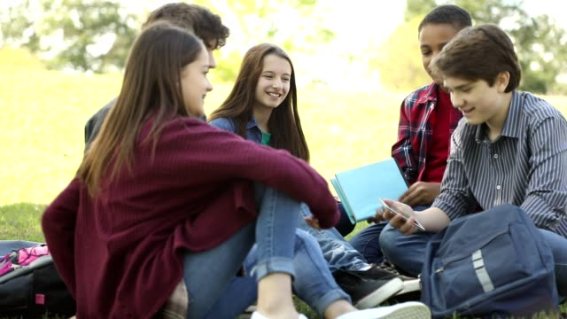 multi-ethnic group of teenagers at park with friends. - preadolescente video stock e b–roll