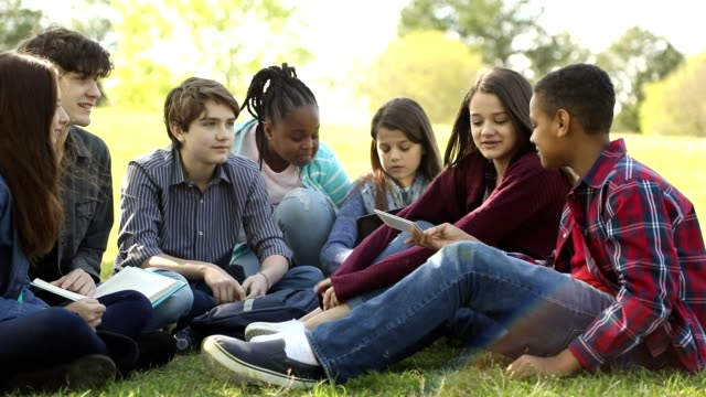 Multi-ethnic group of teenagers at park with friends. Pre-teenage and teenage group of boys and girls hanging out together in local park or school campus with friends.  They talk, look at books, and take group selfie with cell phone. minority groups stock videos & royalty-free footage