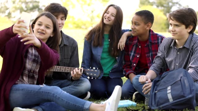 Multi-ethnic group of teenagers at park with friends. video