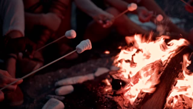 Multi-ethnic men and women roasting marshmallows on skewers over campfire