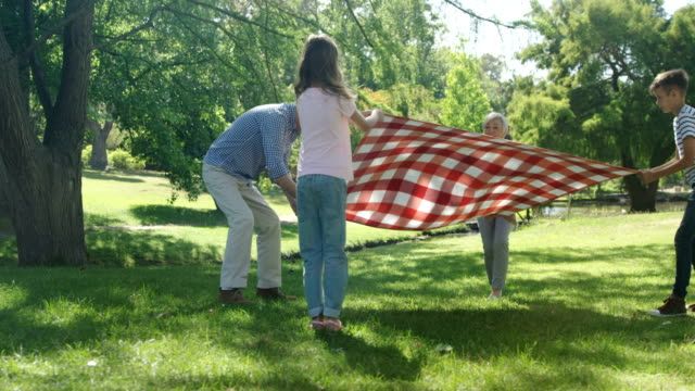 multi-generation family placing blanket in the park - picnic stock videos and b-roll footage