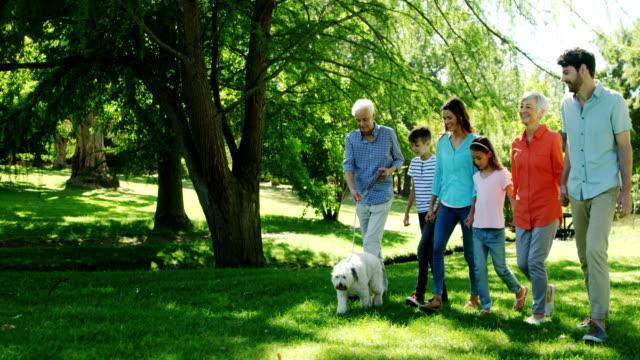 公園でその犬を連れて歩いて多世代家族 ビデオ