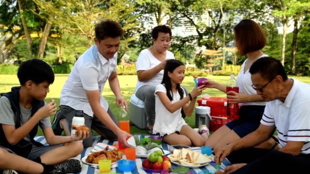 多世代家族公園でピクニック - ピクニック点の映像素材/bロール