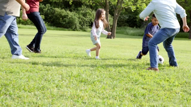 multi-generational family plays soccer at family reunion - reunion stock videos & royalty-free footage