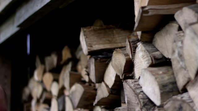 多目的クリップ - 男は森林からログを削除し、その後、木小屋にログを配置します - 薪点の映像素材/bロール