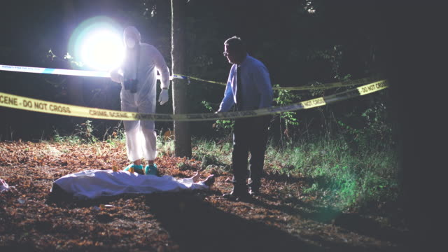 Murder in the woods 4K Two men, crime scene investigation, police and forensics doing their jobs, there is a dead body in the forest. 4K crime scene stock videos & royalty-free footage