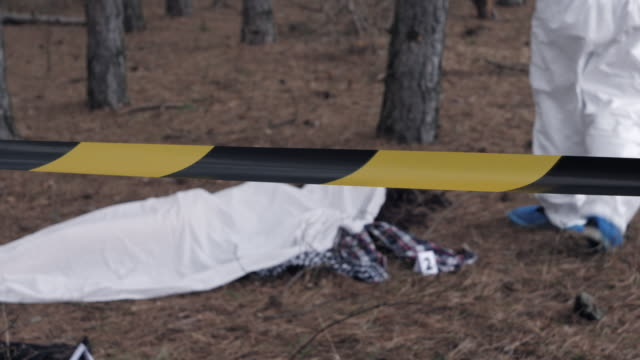 murderer in the forest, forensic scientist working at crime scene. - cadavere video stock e b–roll