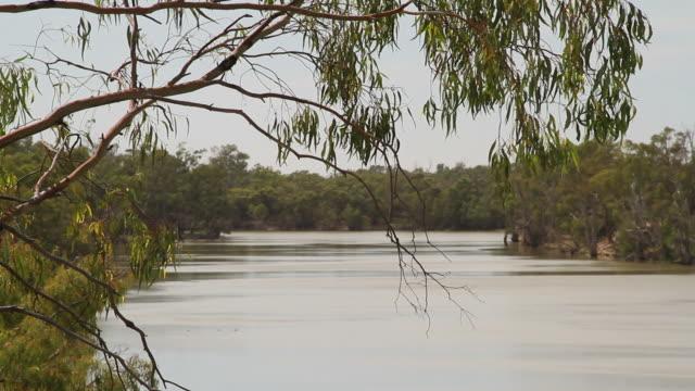 Murray River, Australia video