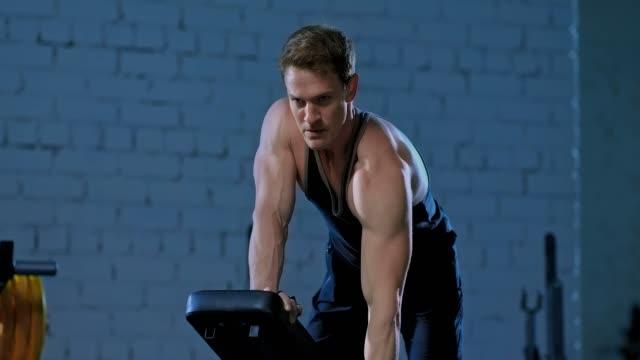 ベンチに重点を置いてダンベルプルをしている筋肉のアスリート, 上腕二頭筋とラティシムス・ドリシのための運動.ダンベルと基本的な演習, ボディービルダーのトレーニング. - 人の筋肉点の映像素材/bロール