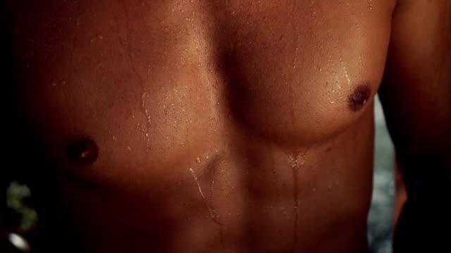 muskulöse männliche körper - nackter oberkörper stock-videos und b-roll-filmmaterial