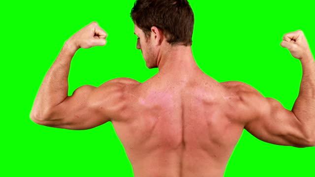 근육질의 남자, 성과향상을 촉진하는 유연한 그릐 근육 - 보디 빌딩 스톡 비디오 및 b-롤 화면