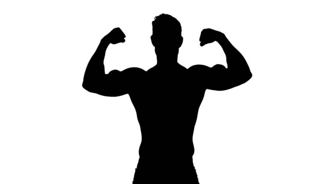 Muscular silhouette of man flexing muscles Muscular silhouette of man flexing muscles on white background macho stock videos & royalty-free footage
