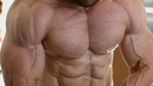 근육 질 몸입니다. 강한 남자의 몸통 - 보디 빌딩 스톡 비디오 및 b-롤 화면