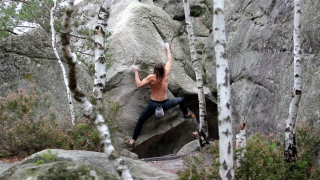 Muscular young man climbing a boulder in Fontainebleau area video