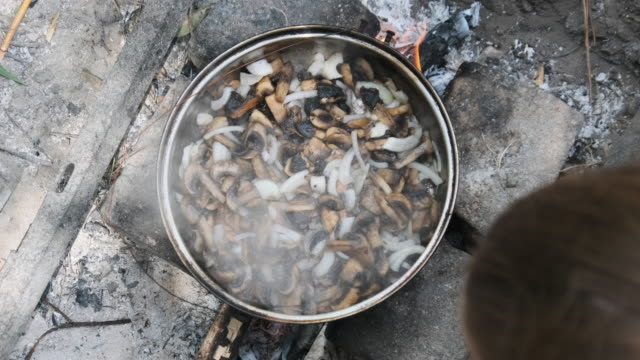Mushrooms are Fried in a Pan over Fire in Field Conditions on Hand Made Kitchen