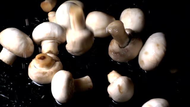 Mushrooms Falling In Slow Motion video