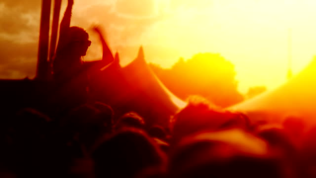 Music Festival Crowd video
