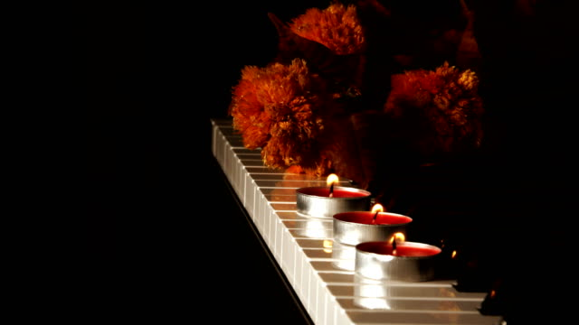Musical Instrument Piano Candle Light and Dry Flowers