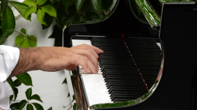 Musician hands playing the piano