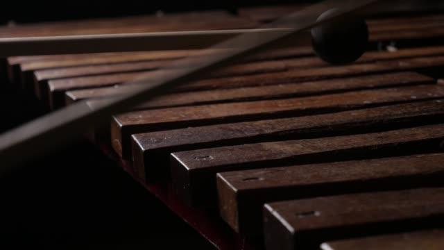 Musician play xylophone or marimba