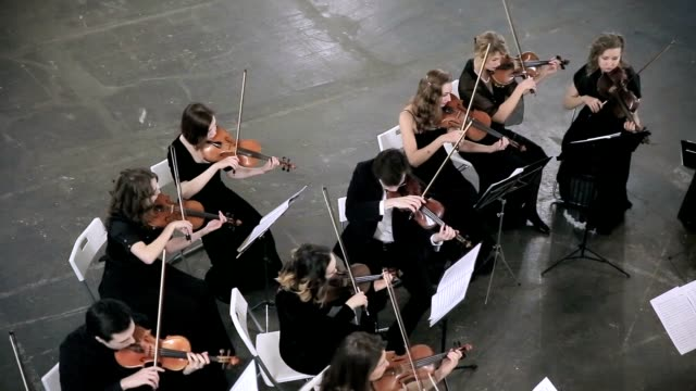 musician playing classic music in the orchestra - orchestra video stock e b–roll