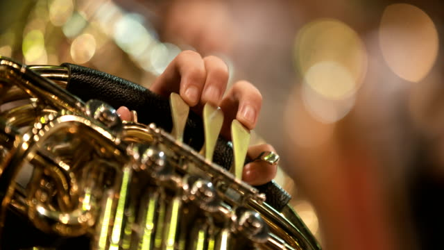 musician playing french horn during concert - musician stock videos and b-roll footage