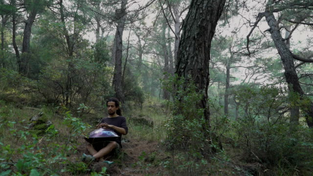 MONTAGE: Musician playing handpan in forest (sound/audio available)