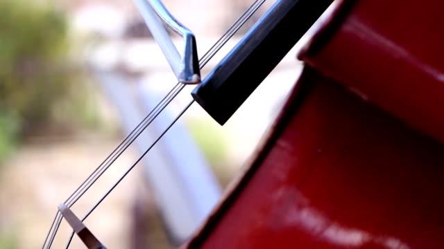 musicista suona il violoncello, note prima - solo adulti video stock e b–roll