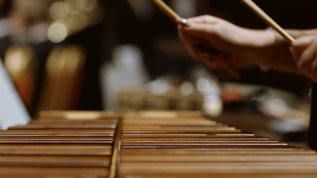 Musician playing xylophone in orchestra video