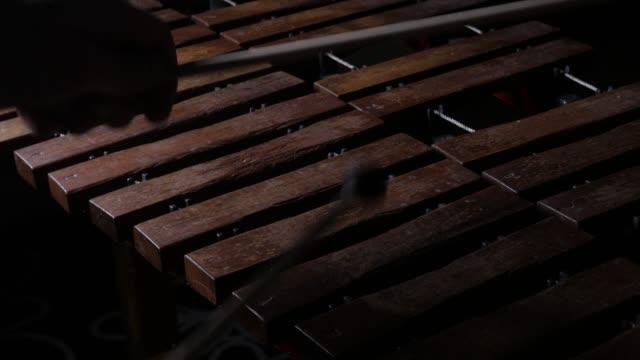 Musician playing xylophone