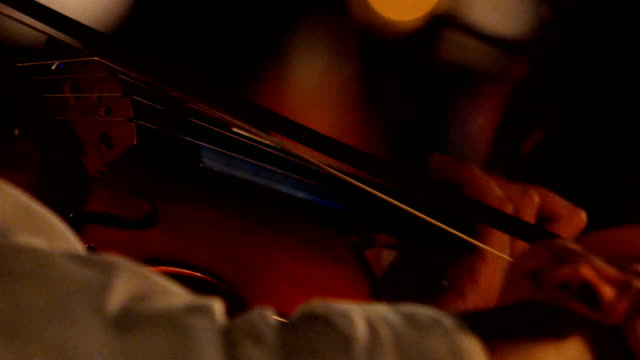 4K Musicians playing violin at a outdoor night concert
