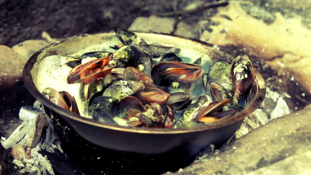 Mussels cooked on a sea beach video